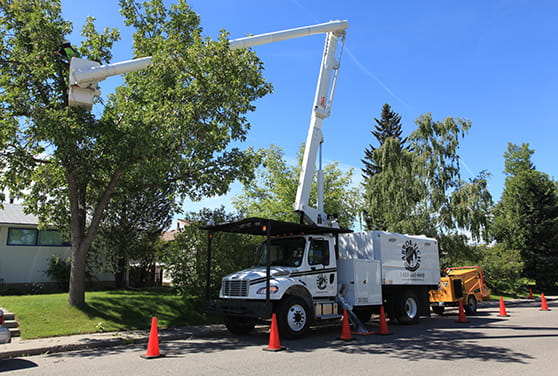 Bucket truck with arial lift